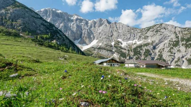 Kosher Summer Hotel 2021 in Tyrol, Austria with Tour Olam