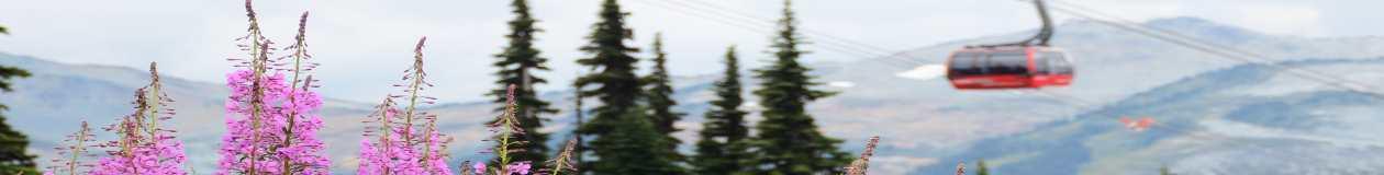 Passover Programs 2021 Canada - skiing, snowboarding, hiking, golf, tennis, spa