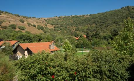Pesach resort in Merom Golan with Zvi Lapian